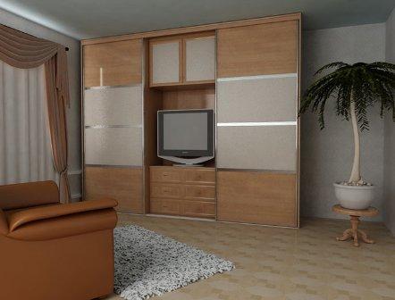 Дизайн шкафа-купе с нишей (фото 5)